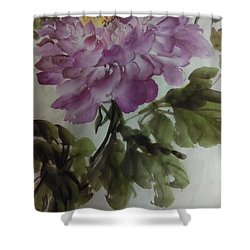 Peony20170126_1 Shower Curtain by Dongling Sun