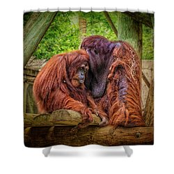People Of The Forest Shower Curtain