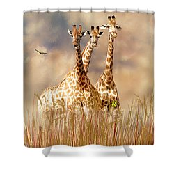 People Watchers Shower Curtain by Diane Schuster
