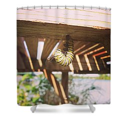Peparing For Transformation Shower Curtain