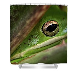 Frogy Eye Shower Curtain by Denis Lemay