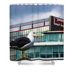 Perched Gull Shower Curtain