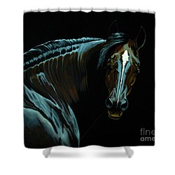Percheron Mare In The Moonlight Shower Curtain