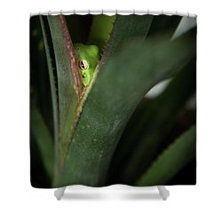 Perching With Comfort Shower Curtain by Denis Lemay