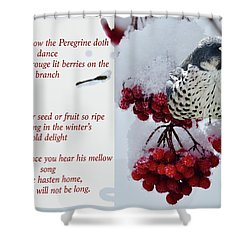 Peregrine Song Shower Curtain