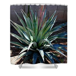Perfect Aloe Shower Curtain by M Diane Bonaparte