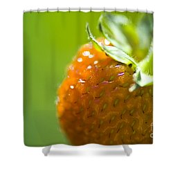 Perfect Fruit Of Summer Shower Curtain by Heiko Koehrer-Wagner