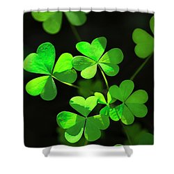 Perfect Green Shamrock Clovers Shower Curtain