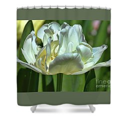 Perfect Love Shower Curtain by Diana Mary Sharpton