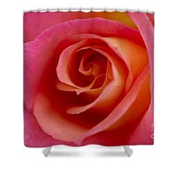 Perfect Moment Rose Shower Curtain