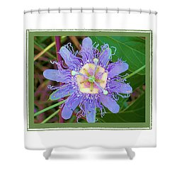 Perfect Passion Flower 2 Shower Curtain