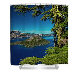Perfect Picture Frame Shower Curtain