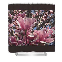 Perfect Pink Petals Shower Curtain