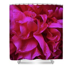 Perfectly Pink Peony Petals Shower Curtain