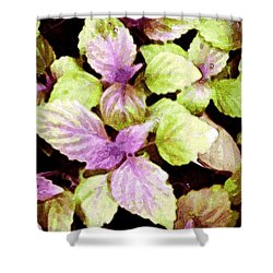 Perilla Beauty Shower Curtain