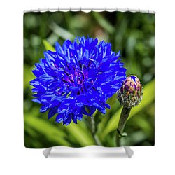 Perky Cornflower Shower Curtain