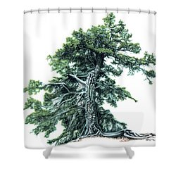 Perserverance Shower Curtain