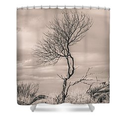 Perseverance Shower Curtain by Racheal Christian