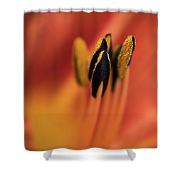 Persimmon Lilly Shower Curtain by Deborah Scannell