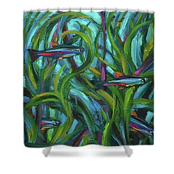 Persistent Fish Betta  Shower Curtain