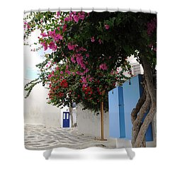 Shower Curtain featuring the photograph Perspective Blue Door by Haleh Mahbod
