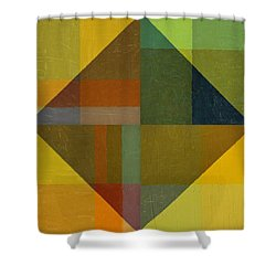 Perspective In Color Collage 8 Shower Curtain