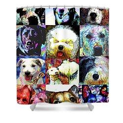 Pet Portraits Shower Curtain