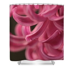 Shower Curtain featuring the photograph Petal Pointing  by Connie Handscomb