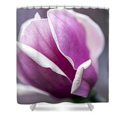 Shower Curtain featuring the photograph Petals by Edward Kreis