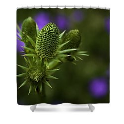 Petals Lost Shower Curtain