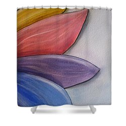 Petals Of Many Colors Shower Curtain