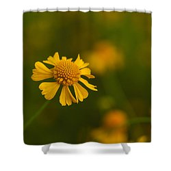Petals Of Nature Shower Curtain by Christopher L Thomley
