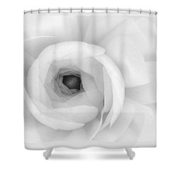 Petals Unfurling Shower Curtain
