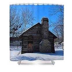 Peter Navarre Cabin I Shower Curtain