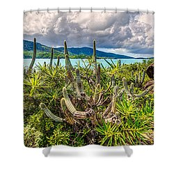 Peterborg Cactus Shower Curtain