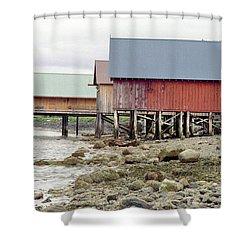 Petersburg Coastal Shower Curtain