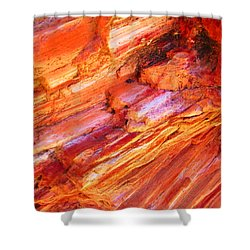 Petrified Abstraction No 1 Shower Curtain by Andreas Thust