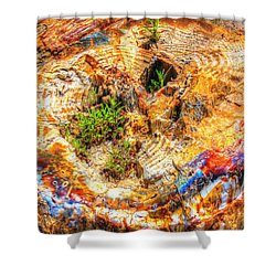 Petrified Abstraction No 2 Shower Curtain by Andreas Thust