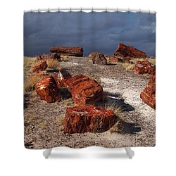 Shower Curtain featuring the photograph Petrified Forest National Park by James Peterson
