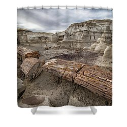 Petrified Remains Shower Curtain by Alan Toepfer
