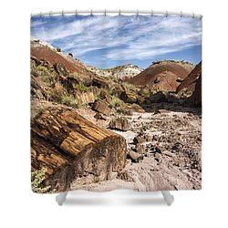 Petrified Wood In The Painted Desert Shower Curtain by Melany Sarafis