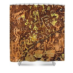 Petroglyph Records Shower Curtain by Phyllis Denton