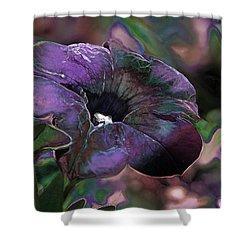 Petunia 1 Shower Curtain by Stuart Turnbull