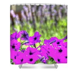 Shower Curtain featuring the photograph Petunia And Lavender by Jerry Sodorff