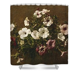 Petunias Shower Curtain by Ignace Henri Jean Fantin-Latour