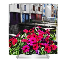 Petunias Of Amiens Shower Curtain by Therese Alcorn