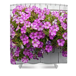 Shower Curtain featuring the photograph Petunias On White Wall by Elena Elisseeva