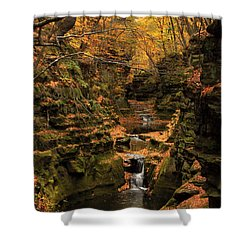 Pewit's Nest - Wisconsin Shower Curtain