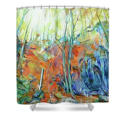 Pfeil - Arrow Shower Curtain by Koro Arandia