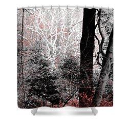 Phantasm In Wildwood Shower Curtain